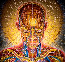 enlightenmentpic2-alexgrey